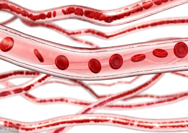 """被称为天然""""血管支架"""",多吃这5种食物通血管、防血栓!"""
