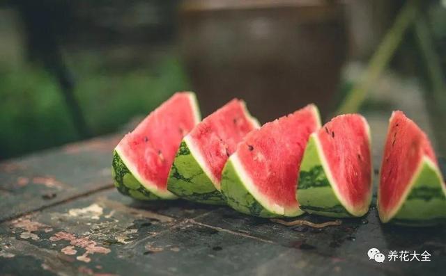 喜欢吃西瓜?教你一招,又大又甜的买回家!