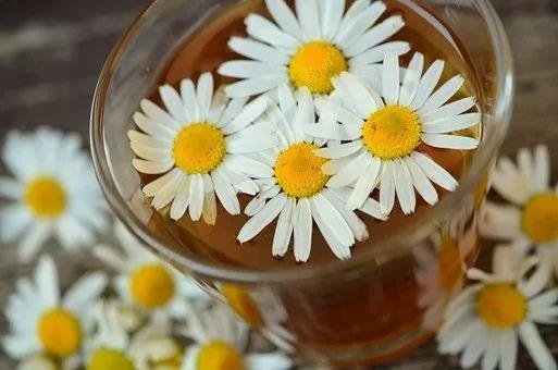 水里加料健康到,10款养生茶喝走疾病!就是这么简单~(快收藏)