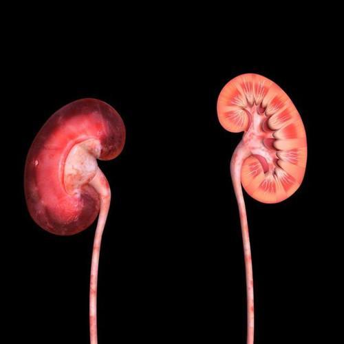 肾病早期,睡觉时会有这4种表现,若占一个,都要抓紧养肾了!